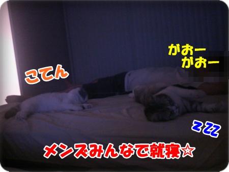 7-003.jpg