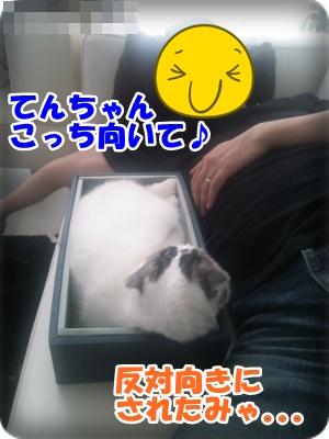 DSC_1697-003.jpg