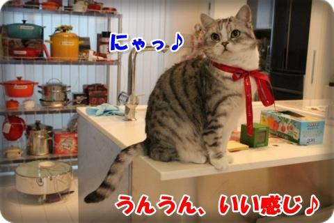 IMG_1640-004.jpg