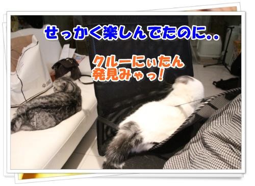 IMG_4989-006.jpg