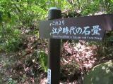 箱根2度目14
