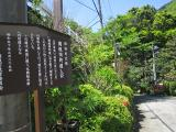箱根2度目9