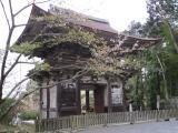 三井寺11