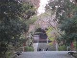 三井寺12