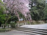 三井寺21