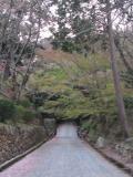 三井寺23