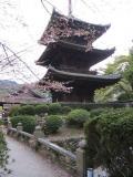三井寺の等