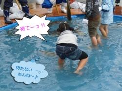 2013鮭のつかみ捕り④