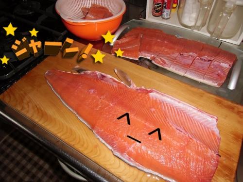 2013鮭のつかみ捕り⑦