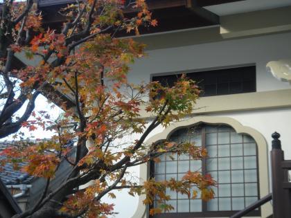 平成26年冬の落葉樹