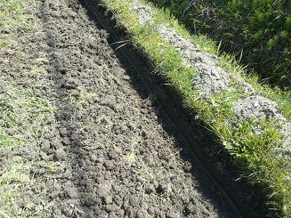 農作業畔際の処理0