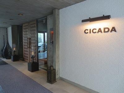 0905CICADA2.jpg