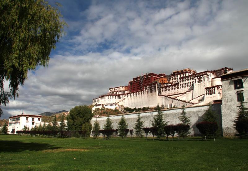 踊る!旅する!ゆきうさぎ-西チベット