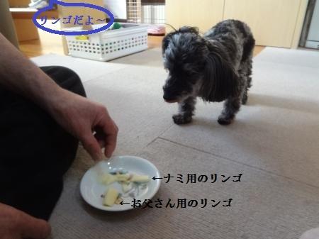 001_convert_20141208170811.jpg
