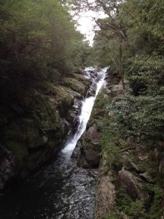 白谷雲水峡②