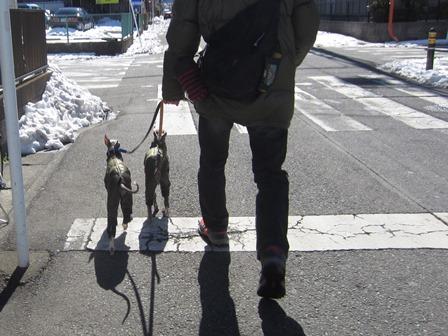 0216雪散歩_01