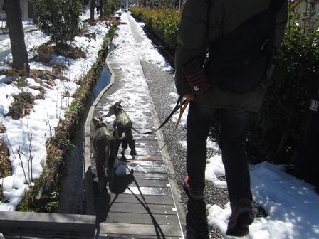 0216雪散歩_03