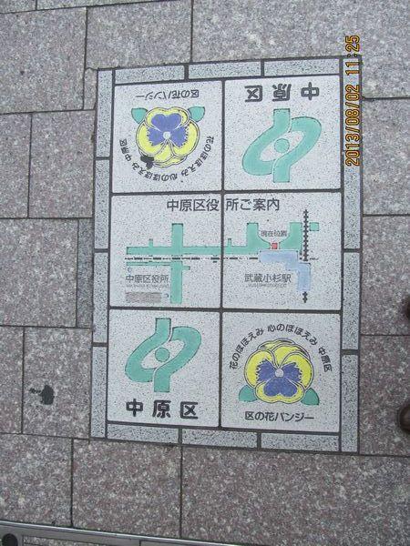 0802kosugi02.jpg