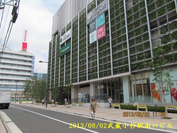 0802kosugi40.jpg