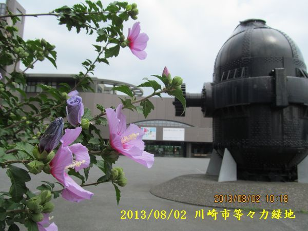 0802museum04.jpg