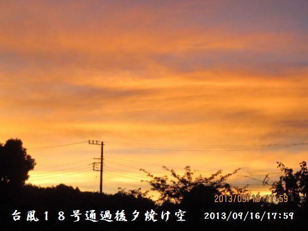 20130916-10.jpg