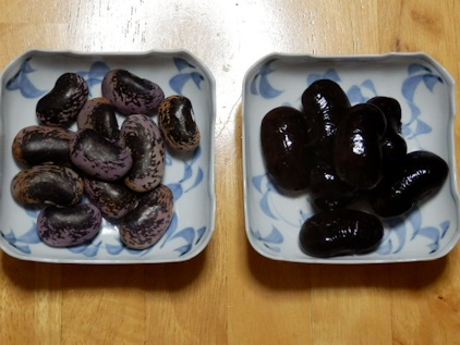 高原豆です
