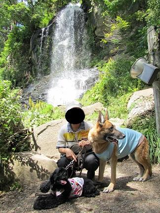 八ヶ岳の滝