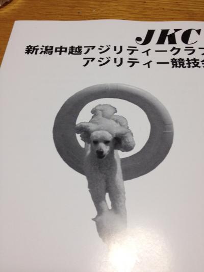 蜀咏悄+(100)_convert_20131011105942