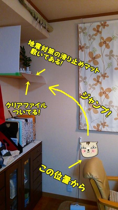 DSC_0776.jpg