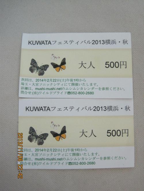 IMG_8144_2013秋KUWATA3