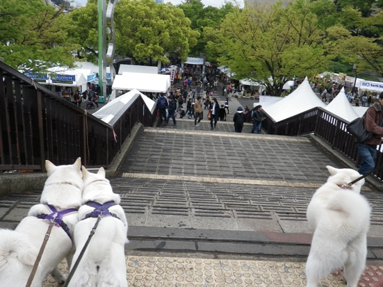 2013.4.21 代々木公園・アースデイ