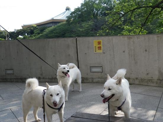 2013.5.6 昭和館入口で