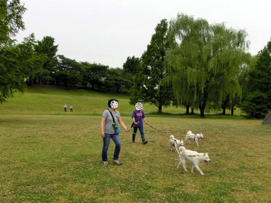 2013.5.28 大宮公園・最後のポイント