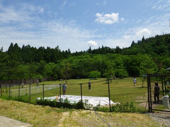 2013.6.2 わんわんぱーく・ドッグラン