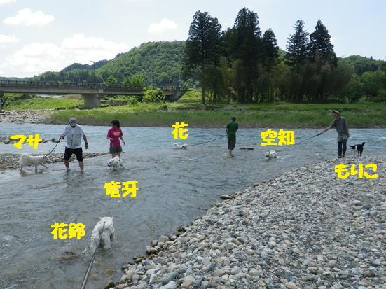 2013.6.3 みんなで水遊び
