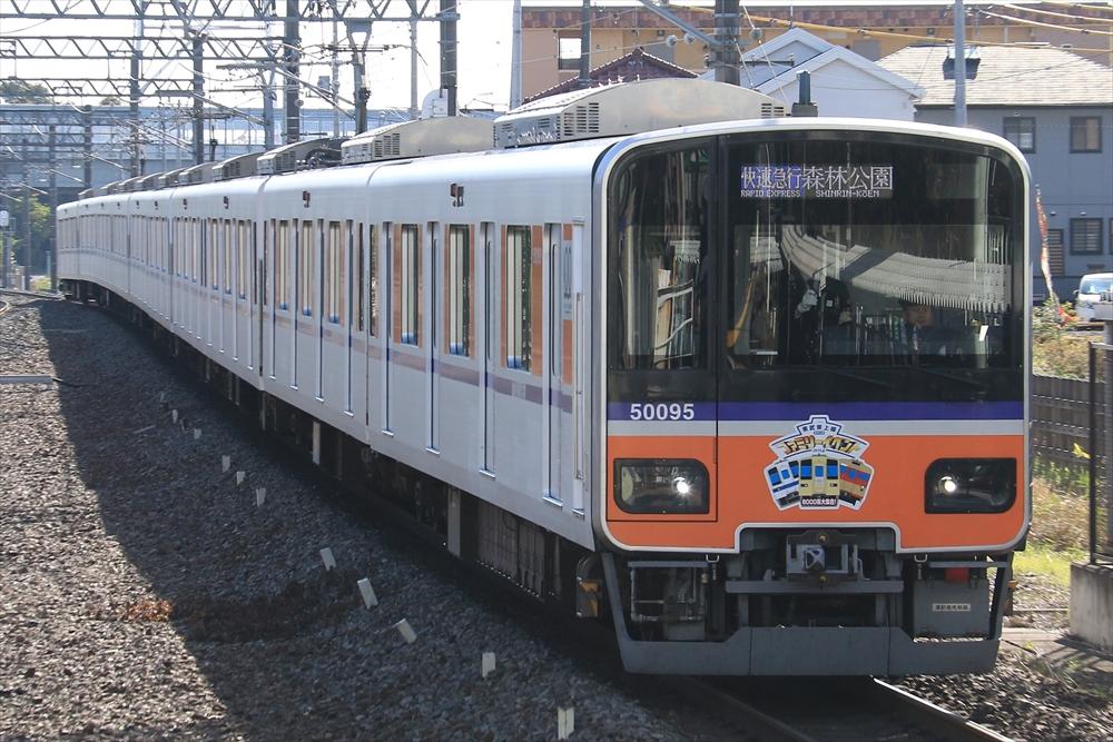 51095F 2014 11/16