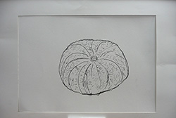 P1590652.jpg