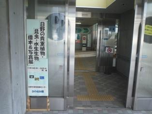 入口昆虫館