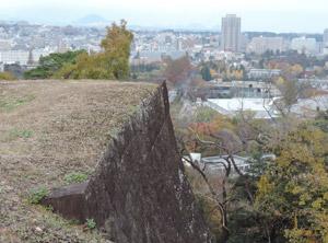 城跡から向いの山blog01