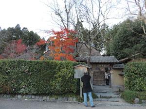 落柿舎blog01