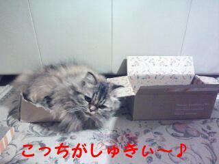 20131107_221852.jpg