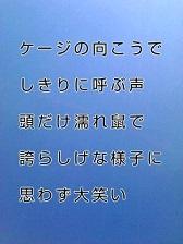 KC3Z008800010001 (5)-1