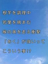 KC3Z008300010001 (8)-1