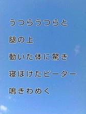 KC3Z010100010001 (8)-1