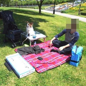 GWにピクニック