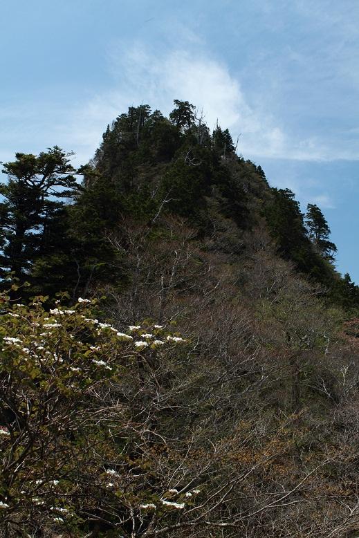 大日山、1