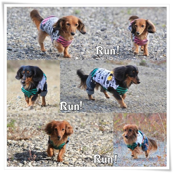 Run! Rnn! Run!