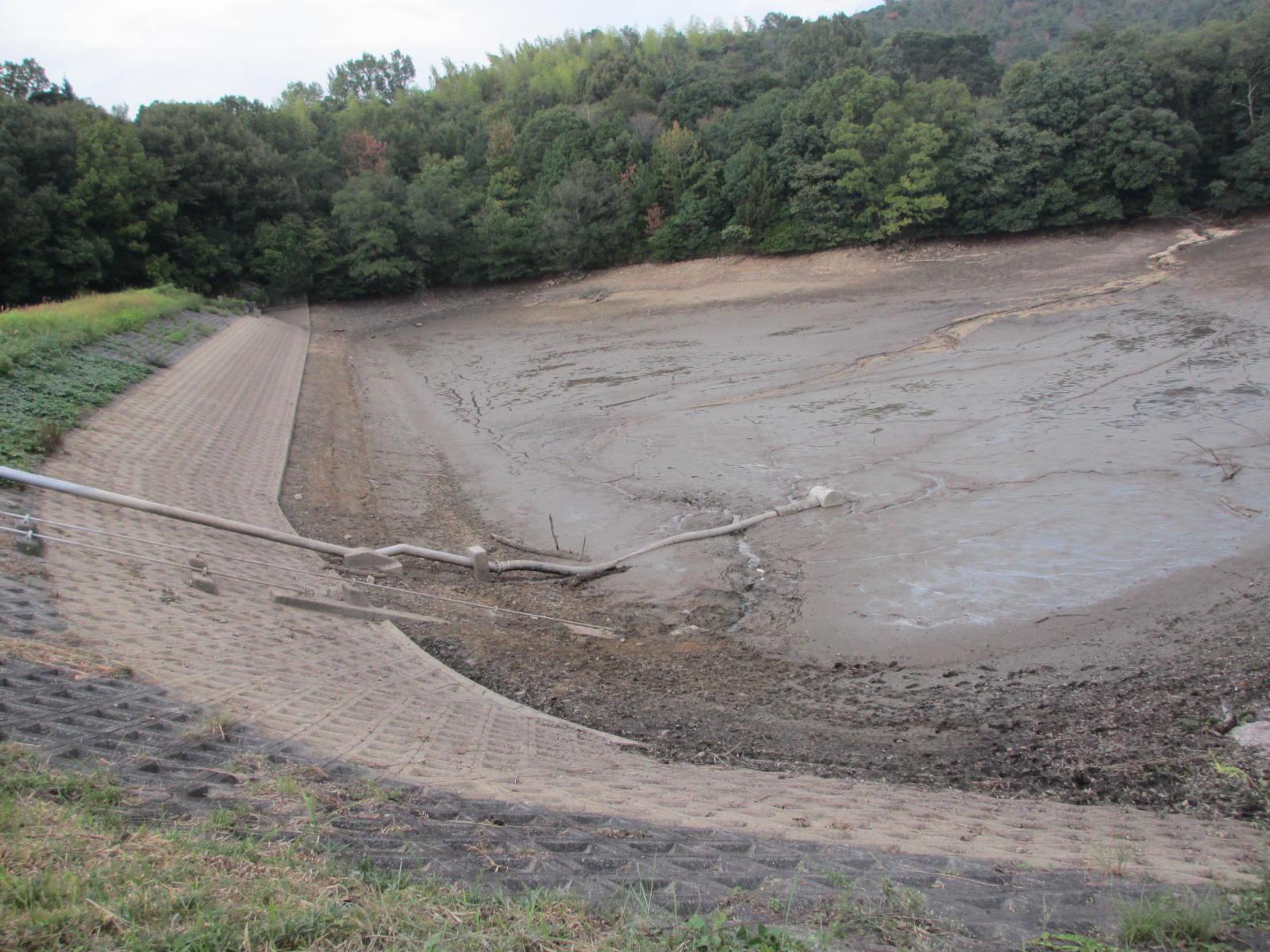 池干し中の田中大池