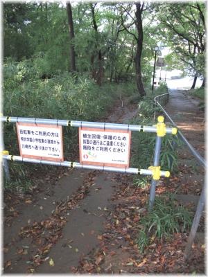 141102G 005鶴川台尾根道切り通し34
