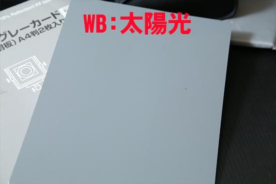 2013_1202_03.jpg